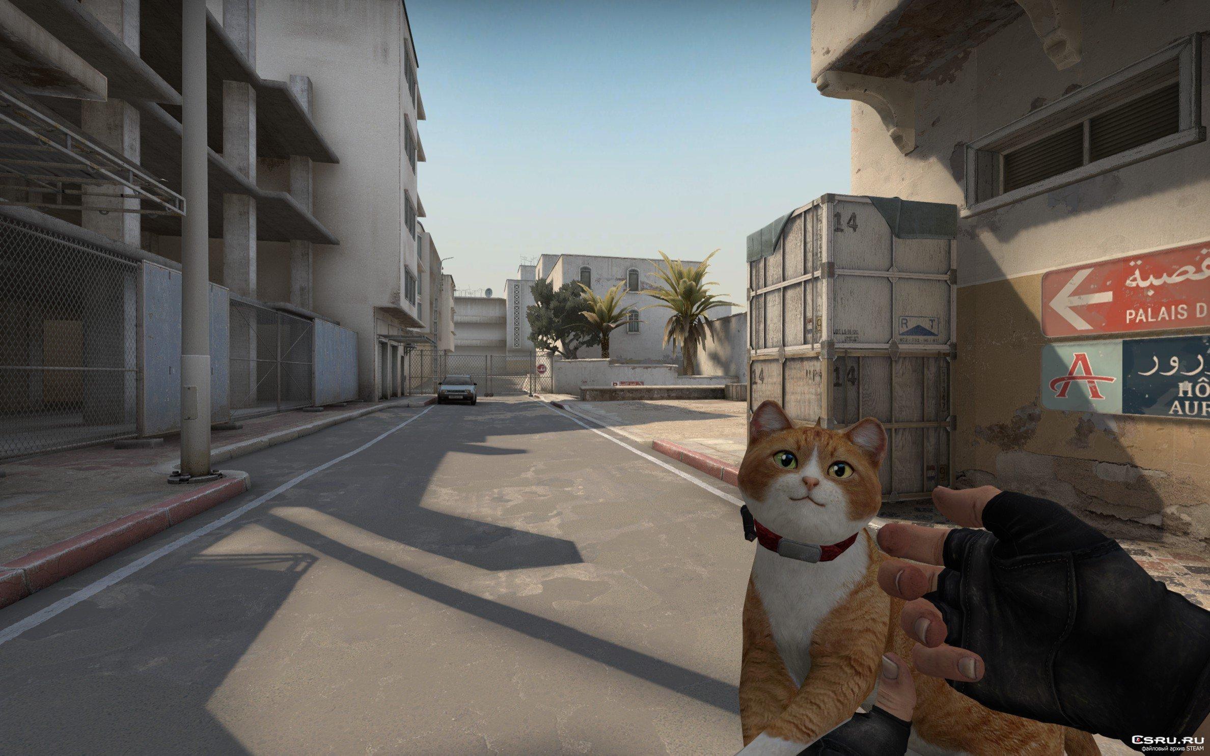 Модель оружия Кот автомат - Cat Gun для CS GO