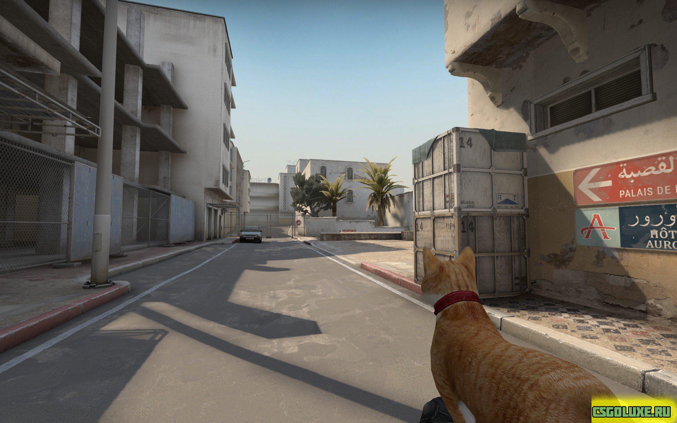 Кот автомат для CS GO