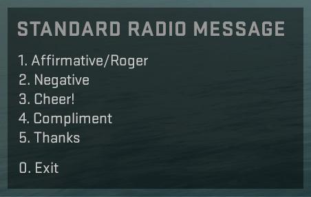 радио панель в кс го