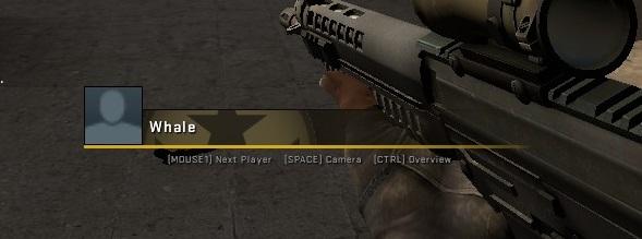 Как скрыть ники игроков в cs:go